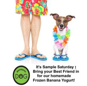 Sample Saturday - Frozen Banana Yogurt
