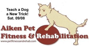 Teach a Dog a New Trick - Dr. Sybil Davis