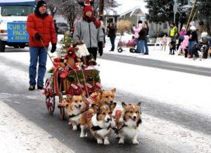 Jaycee's Christmas Parade